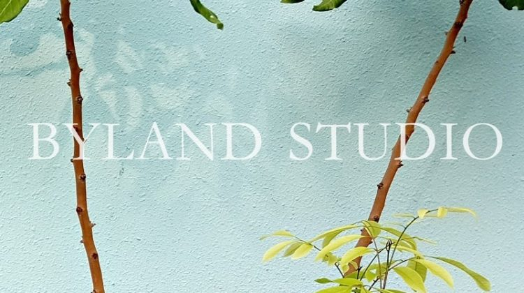 Byland Studio
